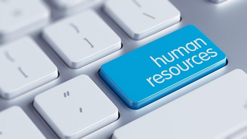 Какие уровни HR бывают в организации?